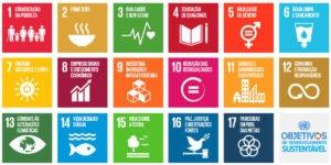 Objetivos de Desenvolvimento Sustentável (ODS) e o impacto na indústria de softwares